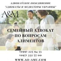 Семейный адвокат по вопросам алиментов Харьков