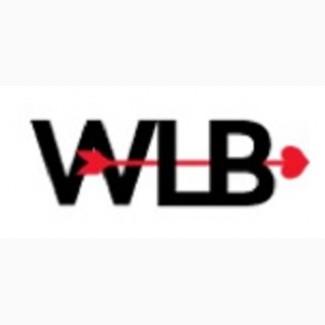 WeLoveBrands - брендинговое агентство и студия графического дизайна