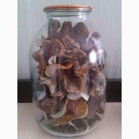 Продам сухі білі гриби12