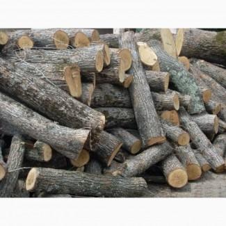 Продаємо дрова метровий кругляк торфобрикет доставка Ківерці
