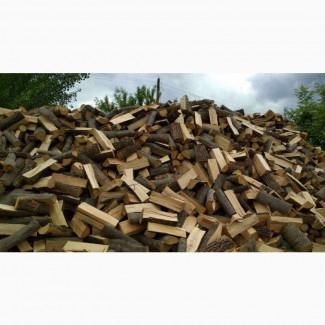 Продаю дрова рубані ціна Горохів, Горохівський район