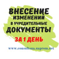 Смена директора, учредителя, адреса, КВЭД, названия за 1 день, Днепр